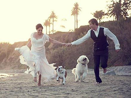 Ricki Lake Incorporates Her Dogs in Secret Wedding