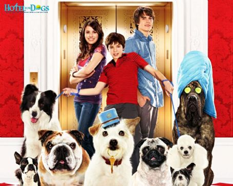 Jake T. Austin Hotel For Dogs
