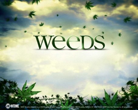 Weeds Wallpaper