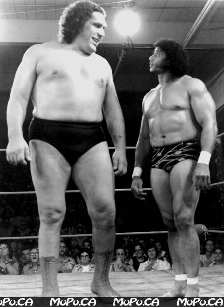 André the Giant André the Giant