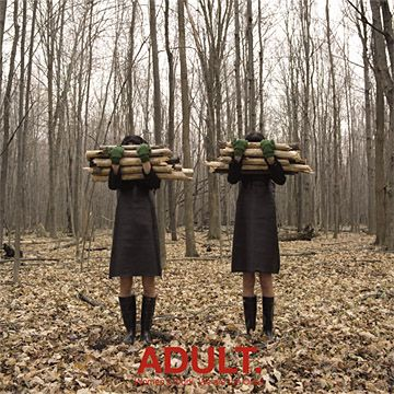 Related Links: Adult, Decampment: Part 3 (2008). +0. Rate this album cover