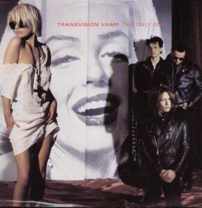 Transvision Vamp