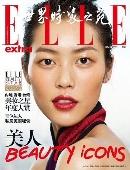 Liu Wen - Elle Magazine Cover [China] (January 2011)