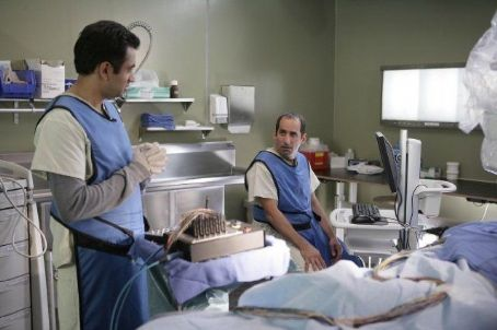 Dr. Lawrence Kutner House M.D. (2004)