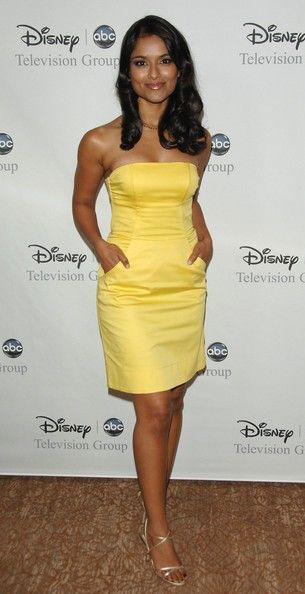 Dilshad Vadsaria Disney And ABC's 'TCA - All Star Party'