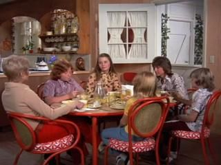 Danny Bonaduce The Partridge Family