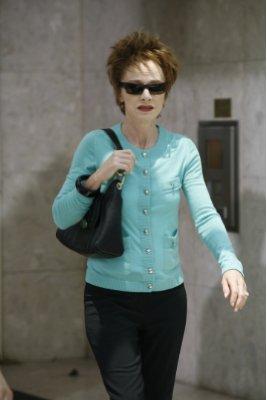 Judy Davis The Starter Wife (2008)